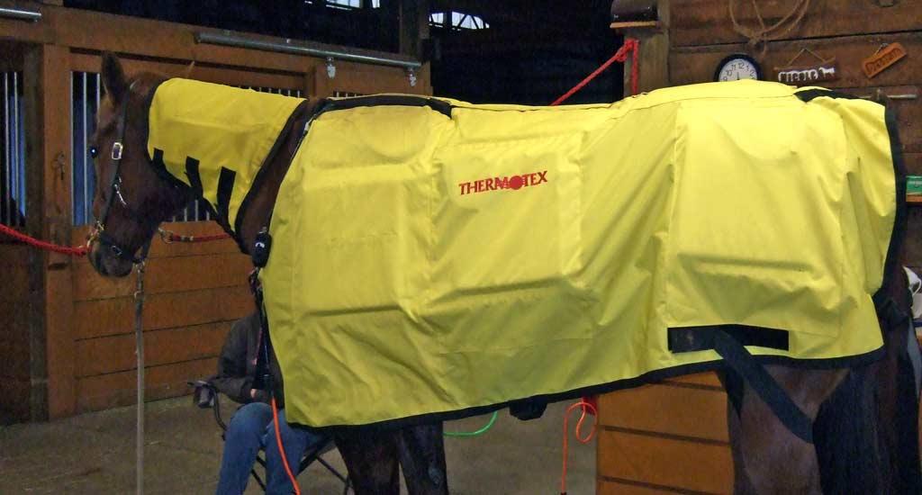 Equine Infrared Heat Blankets