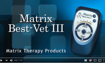 Video: Matrix Best-Vet III