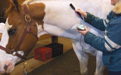 Smart Horse Care using the Matrix Best-Vet III