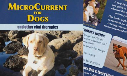Deborah's New Book: MicroCurrent for Dogs