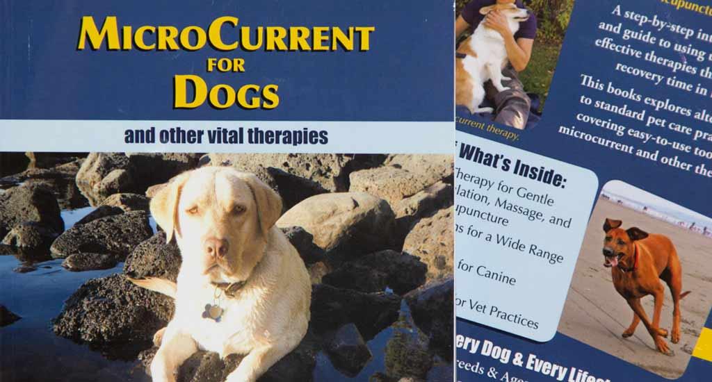 Deborah's New Book: MicroCurrent for Dogs