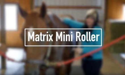 Video: Matrix Mini Roller Electrode