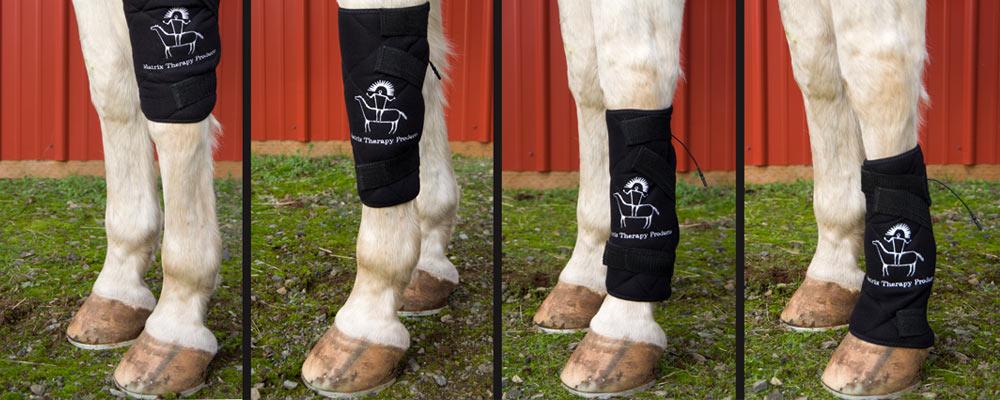microcurrent-horse-legwrap