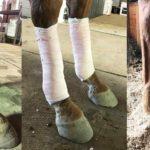 Case Study: Addressing an Old Leg Injury